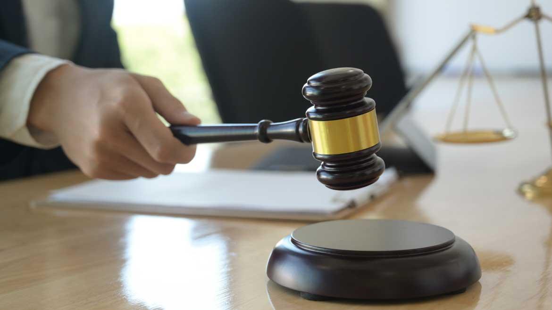 Advice on Regulation, Legislative Technique and Normative Quality